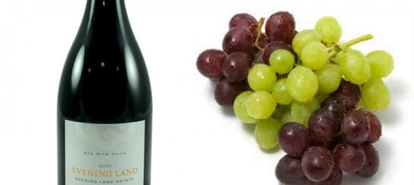Pinot Noir Wine